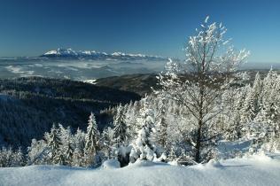 Zimowy widok na Tatry z Beskidu Sądeckiego
