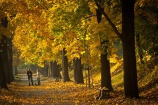 Aleja Waszyngtona jesienią