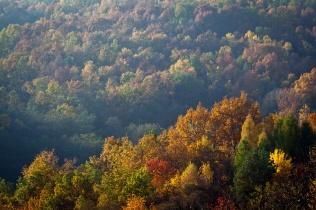 Pogórze jesienią