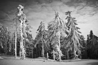 Sroga zima na Skrzycznym