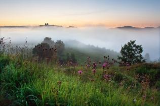 Mgły w Tyńcu