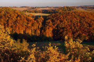 Jura jesienią