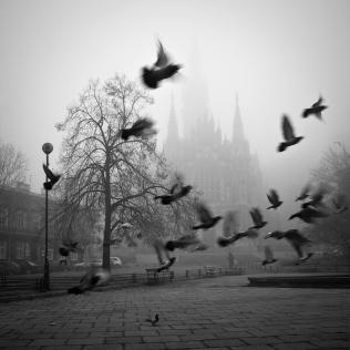 Listopad w Krakowie